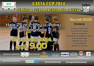 rsp cup 2014